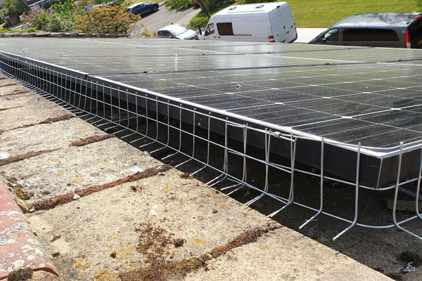 solar panels pigeon proofing by pest id in south woodham ferrers essex