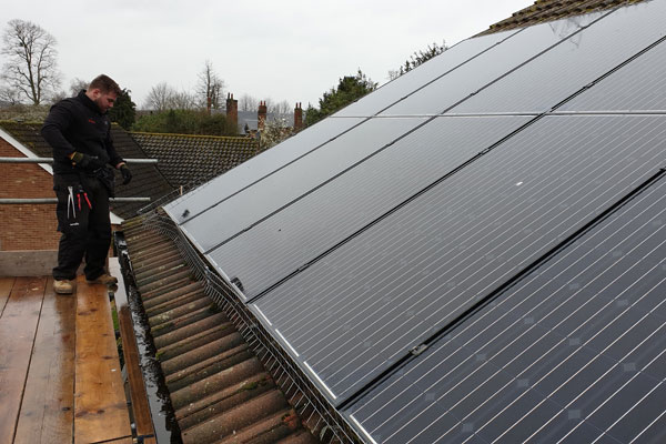 pest id technicial installing solar panel pigeon proofing in chelmsford essex