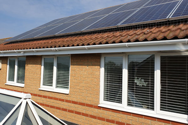 solar panels pigeon proofing by pest id in hockley essex