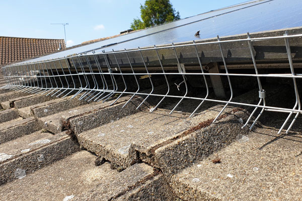 solar panels pigeon proofing by pest id in rayleigh essex