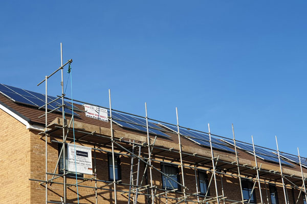 solar panels pigeon proofing by pest id in rochford essex