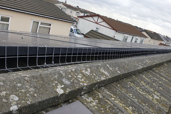 solar panels pigeon proofing by pest id in billericay essex