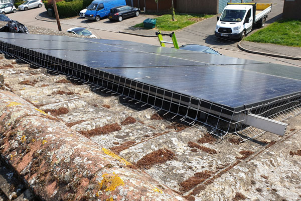 solar panels pigeon proofing by pest id in tiptree essex