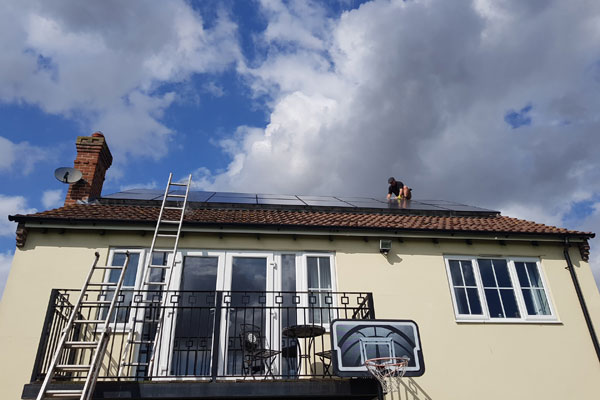 pest id technicial installing solar panel pigeon proofing in hullbridge essex