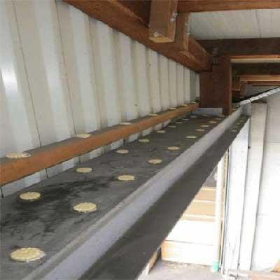 bird gel in the eaves