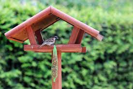a bird feeding table