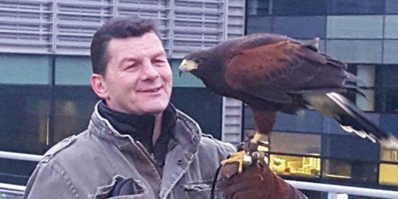 pest id owner ian bright with a harris hawk